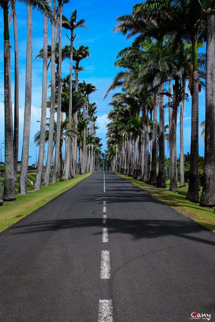 Road to Capesterre-Belle-Eau
